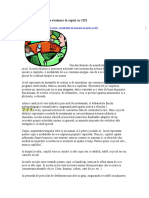 Consiliere CES.doc