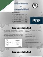 Irreversibilidad y Reversibilidad