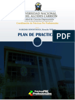 PPP - Plan de Prácticas Paredes