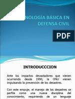 2010- Terminologia Basica Dc