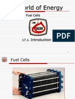 Chapter 17 - Fuel Cells