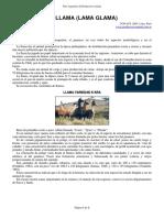 25-llama.pdf