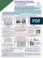 315323059-Beton-Autoplacant.pdf