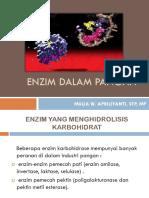 Biokimia Enzim Dalam Pangan