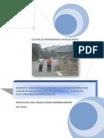 Pip Electrificación Rural Cardonyoc