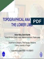 Topographicanatomy Lowerlimb Tisk