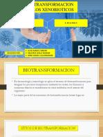 Biotransformacion de Los Xenobioticos