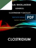 3.- Generos Clostridium - Bacillus