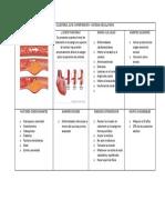 Salud - Colesterol e Hipertensión