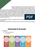 Fiosiopato Signos y Sintomas Kawasaki
