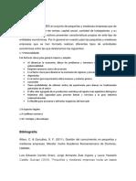 zamora tera - copia (2).docx