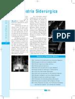 06_Siderurgia.pdf
