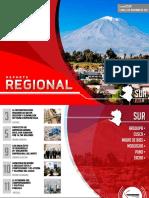 Reporte Regional Sur-2017