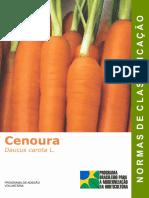 cenoura classificação.pdf