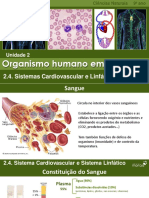 CN9_Sistema_Cardiovascular.pdf