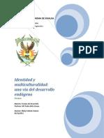 Ensayo Identidad y Desarrollo