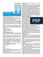 La Fibromialgia Puede Enmascarar La Enfermedad Inflamatoria Crónica de La Columna Vertebral y La Pelvis