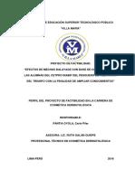 Perfil Del Proyecto de Factibilidad
