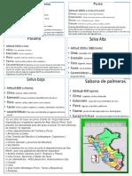 8pisos Del Peru