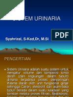Sistem Urin Farmasi