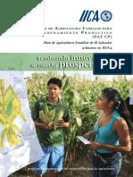 Manual IICA Encadenamient Productivo