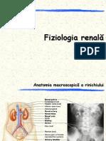 Curs 10-Sistemul excretor-Fiziologie renala