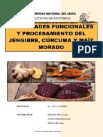 Propiedades Funcionales Del Jengibre, cúrcuma y maíz morado
