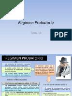 Régimen Probatorio
