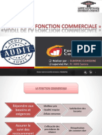 Audit Fonction Commercaile