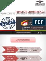 Audit Fonction Commercaile
