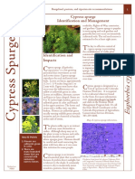 Cypress Spurge Fact Sheet