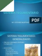 Histología del Sistema Tegumentario