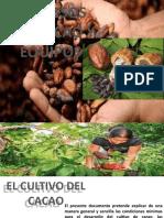 Proceso Del Cacao y Equipos