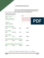 Assembly Programming Format