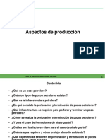 Aspectos-de-Produccion (1) (1)