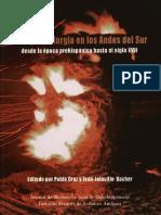 Mina y Metalurgia en Los Andes Del Sur