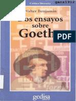 Benjamin, Walter - Dos Ensayos Sobre Goethe