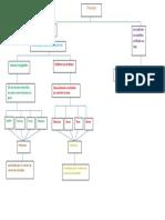 mapa conceptual 4.docx