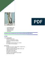 09-eremita.pdf