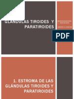 Glándulas Tiroides y Paratiroides