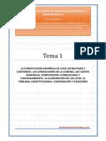 _Tema 01T - Constitucion. Corona. Cortes. TC