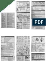 Neuro Sheet