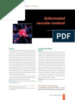 Arauz, A., y Ruíz, A. (2012). Enfermedad Vascular Cerebral. Revista de la facultad de medicina de la UNAM.pdf