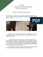 01 - ALEXY Robert - Los Derechos Fundamentales y El Principio de Proporcionalidad - FICHAMENTO