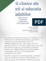 Educatia Adultilor Proiect