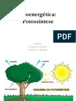 Bioenergética - Fotossíntese I e II