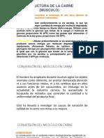Clase11B Conversion de Musculo en Carne[1]