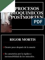 clase11C_procesos_bioquimicos[1].ppt