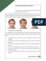 Musculatura de Cara y Cuello