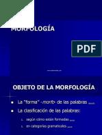 A Morfologia